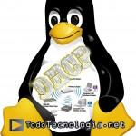 Como configurar un servidor dhcp en linux