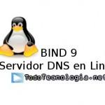 Manual para instalar y configurar un Servidor DNS en Linux